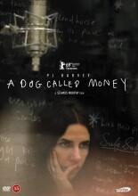 a dog called money - DVD