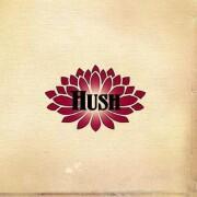 hush - a lifetime - remastered - Vinyl / LP