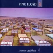 pink floyd - a momentary lapse of reason - Vinyl / LP
