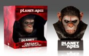 abernes planet / planet of the apes box inkl figur - Blu-Ray