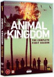 animal kingdom - sæson 1 - DVD