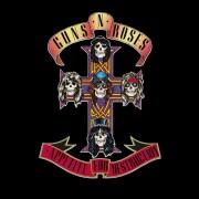 guns n' roses - appetite for destruction - Vinyl / LP