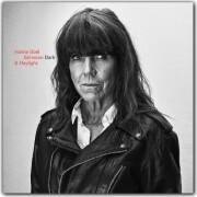 hanne boel - between dark and daylight - Vinyl / LP