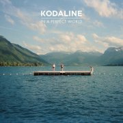 kodaline - in a perfect world - cd