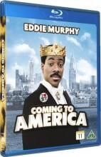 coming to america 1 - Blu-Ray