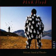 pink floyd - delicate sound of thunder - cd