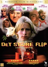 det store flip - DVD