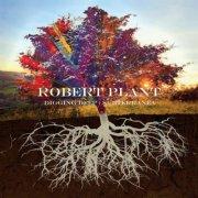 robert plant - digging deep: subterranea - cd