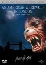 an american werewolf in london / en amerikansk varulv i london - DVD