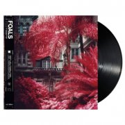 foals - everything not saved will be lost part 1 - Vinyl / LP