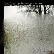 bon iver - for emma, forever ago - Vinyl / LP