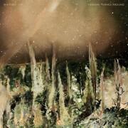 whitney - forever turned around - cd
