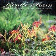 gentle rain - gentle rain - cd