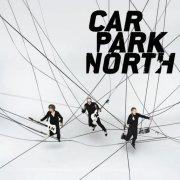 carpark north - grateful - Vinyl / LP