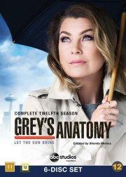 greys hvide verden - sæson 12 - DVD