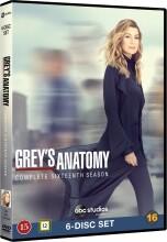 greys hvide verden - sæson 16 / grey's anatomy - season 16 - DVD