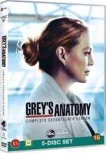 greys hvide verden - sæson 17 - DVD