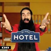 hr skæg - hr skægs hotel - cd