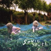sonic youth - murray street - Vinyl / LP