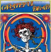 grateful dead - skull & roses - Vinyl / LP