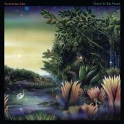 fleetwood mac - tango in the night - Vinyl / LP