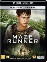 the maze runner - 4k Ultra HD Blu-Ray