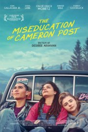 the miseducation of cameron post - DVD