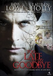too late to say goodbye - DVD