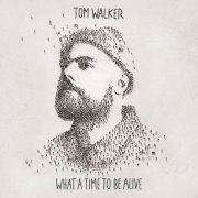 tom walker - what a time to be alive - Vinyl / LP