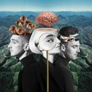 clean bandit - what is love? - limited edition - cd