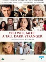you will meet a tall dark stranger - DVD